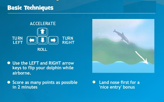 dolphin olympics explanation