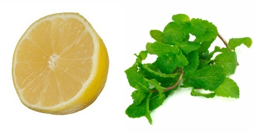 lemon and peppermint
