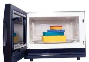 Microwave, Microwave uses, Sponges