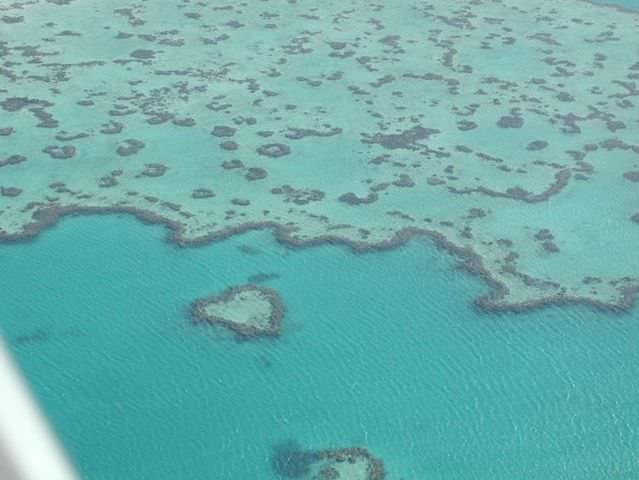 photos barrier reef