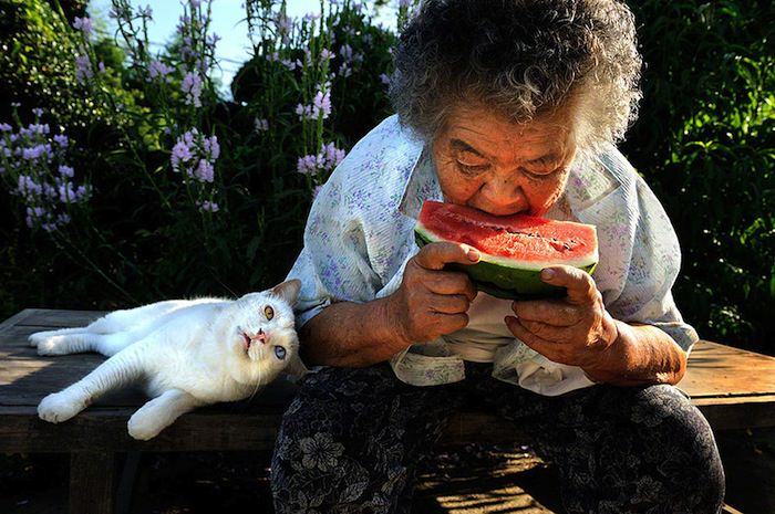 lady and cat friendship