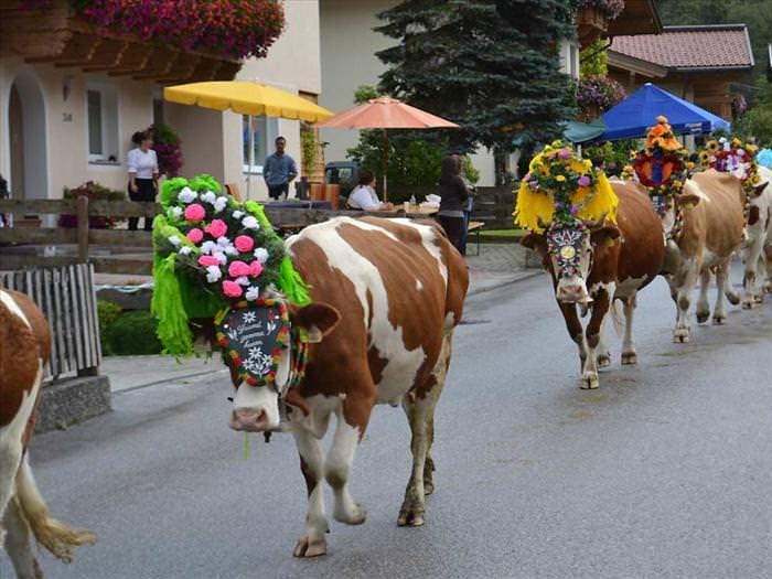 festival tirol