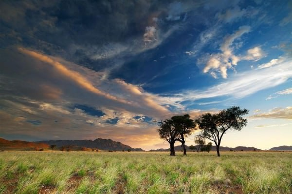 photos of Namibia desert