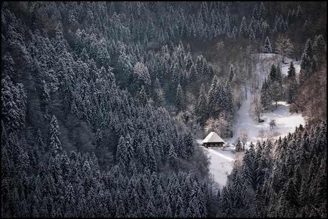 beauty of snow photos