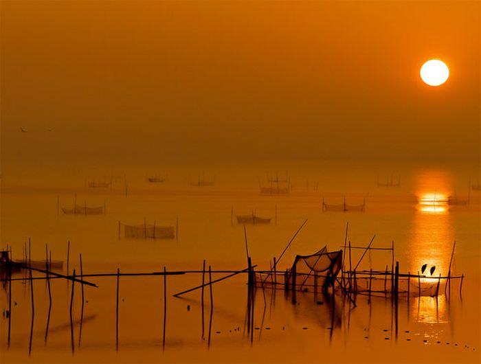 sun photos