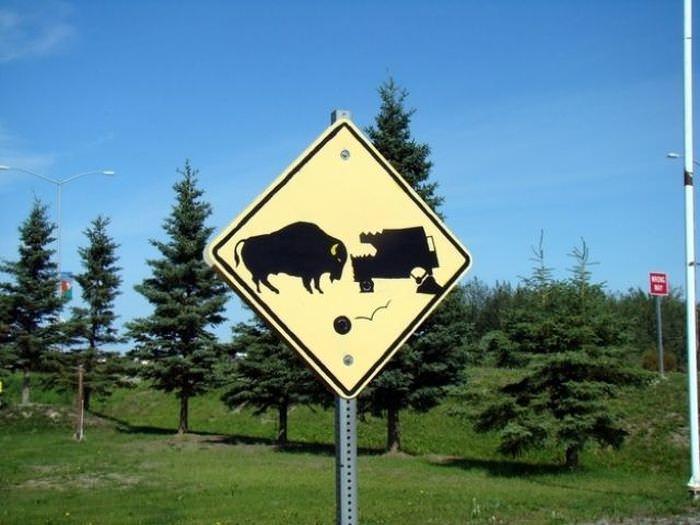 only in Alaska