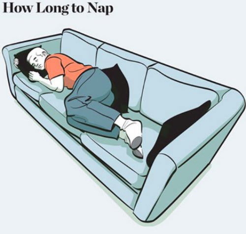 nap facts