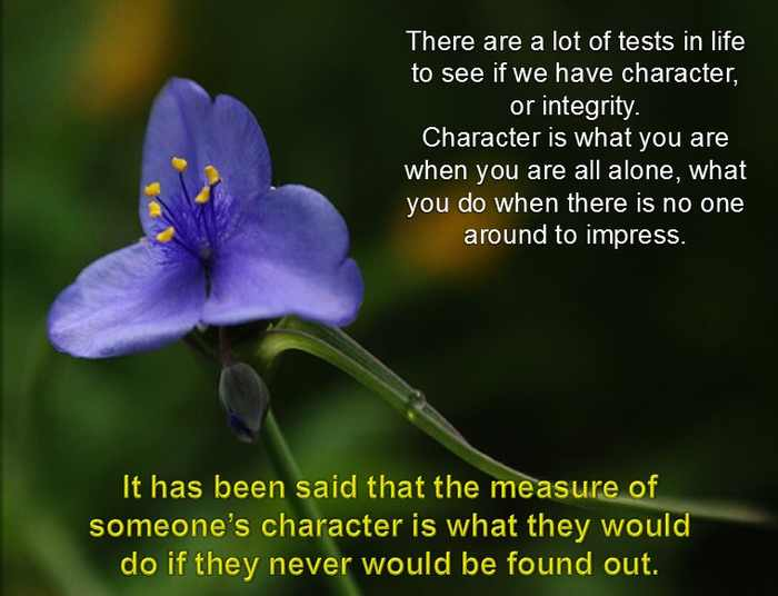 thoughts about character
