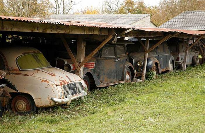 A Hidden Treasure Found On a Family Owned Farm Worth Millions!