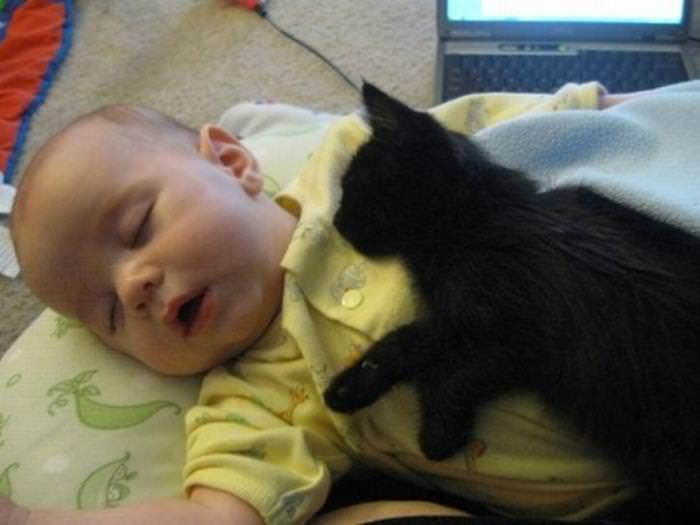 25 Cute Animals Bonding with Kids