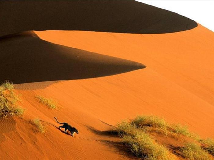 beautiful Africa