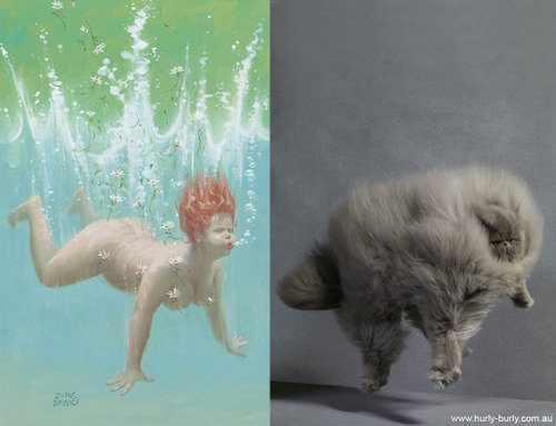 cat models