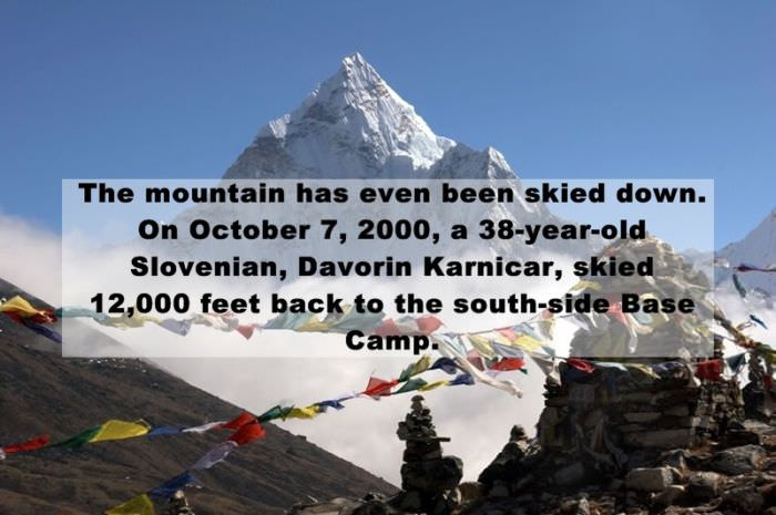 Everest facts