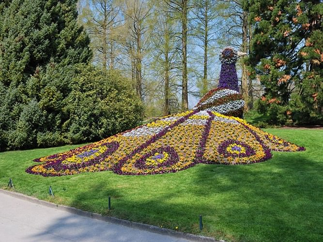 how to get to mainau island