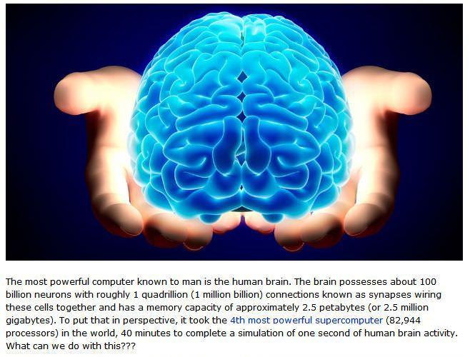 unique brains