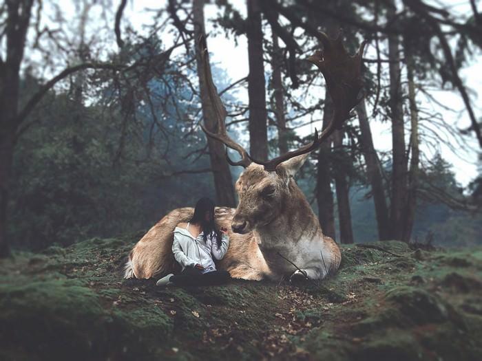 Magical Photos