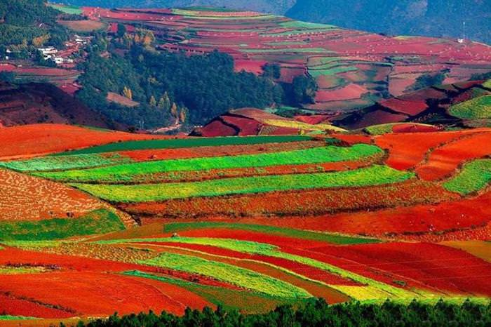 Red Land China