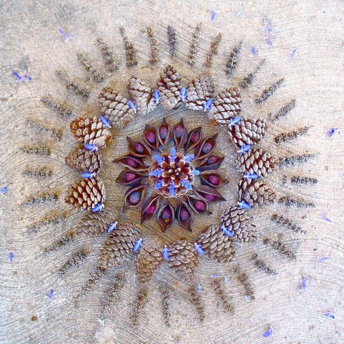 flower petal mandalas