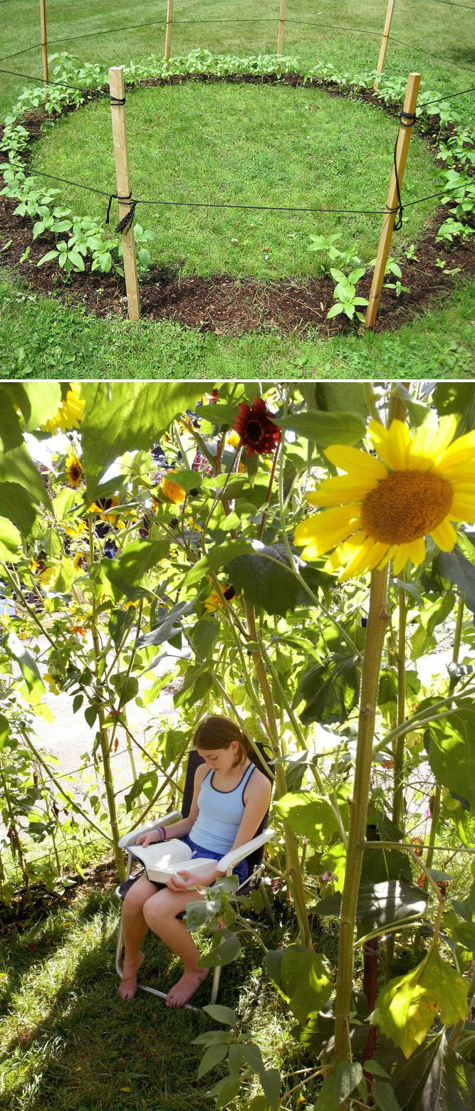 Backyard Things