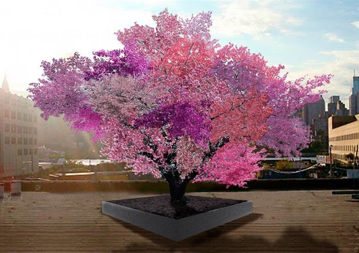 Super Tree