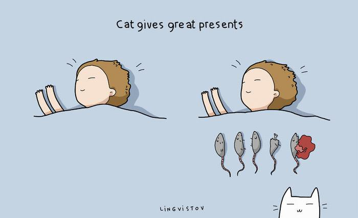 21 Things We Can All Learn From Our Cats