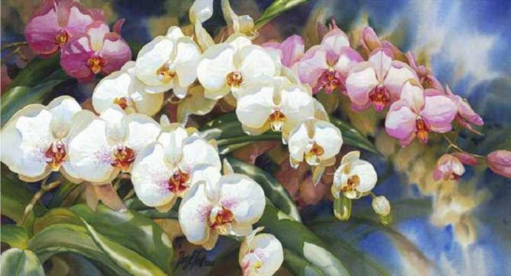 Art - Darryl Trott - Paintings - Beautiful