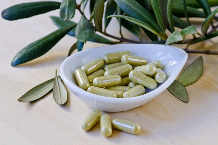 olive leaf, extract, health, benefits