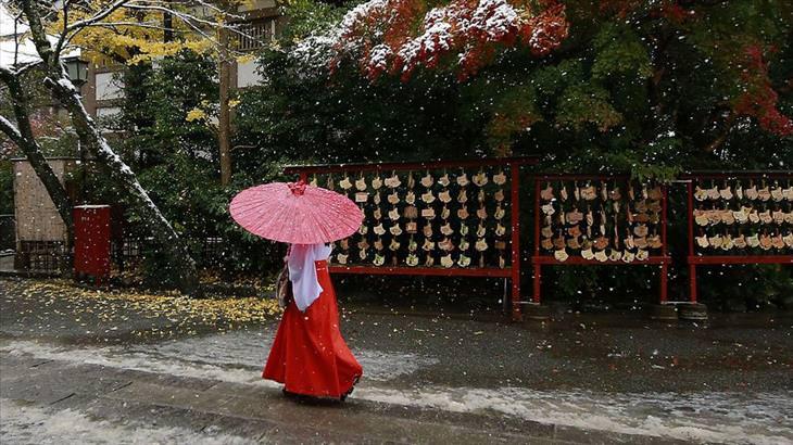 snow, Tokyo, beautiful, November