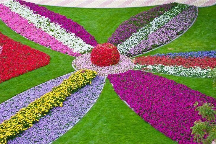 Al Ain, garden, botanic, flowers