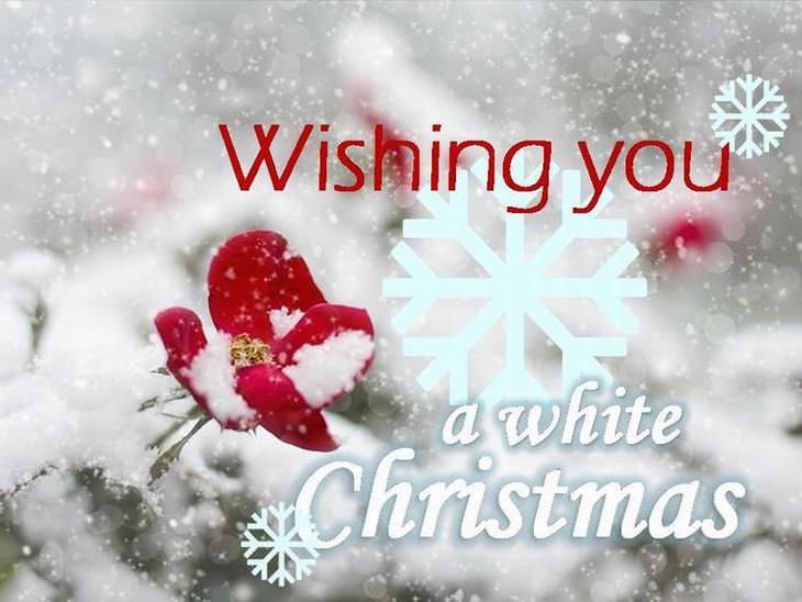 greeting cards christmas