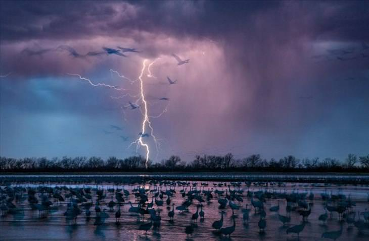 national geographic, 2016, photos, amazing