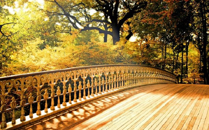 bridge beautiful story