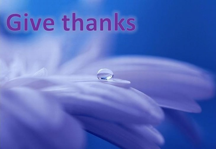 giving thanks touching photos