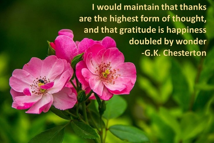 4cced690-5e5d-4a65-bd8e-9294d88e1078 - GRATITUDE  brings you closer to GOD - Inspiration & Hope