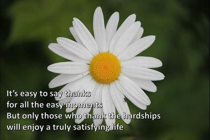 6c05b471-7081-4bc4-965d-050ec2736aba - GRATITUDE  brings you closer to GOD - Inspiration & Hope