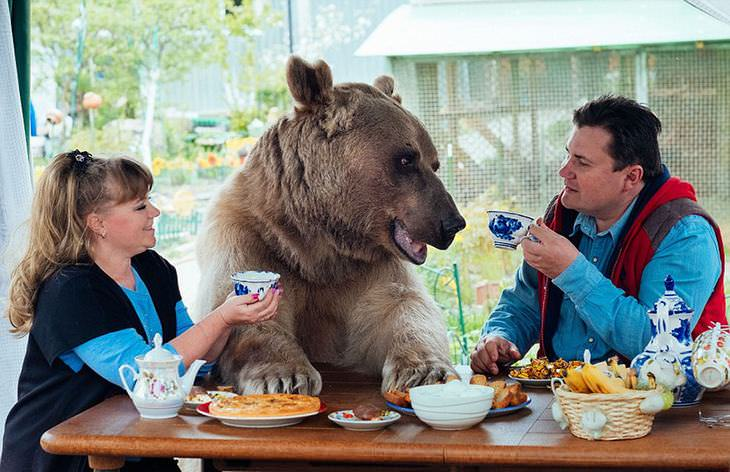 bear with family