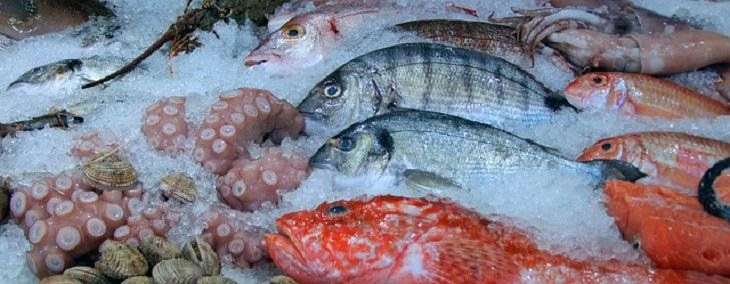 fish health benefits