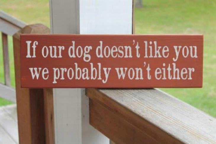 funny beware dog signs