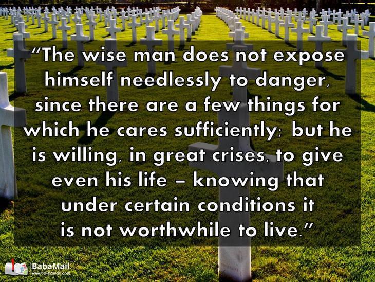 aristotles wisdom essay