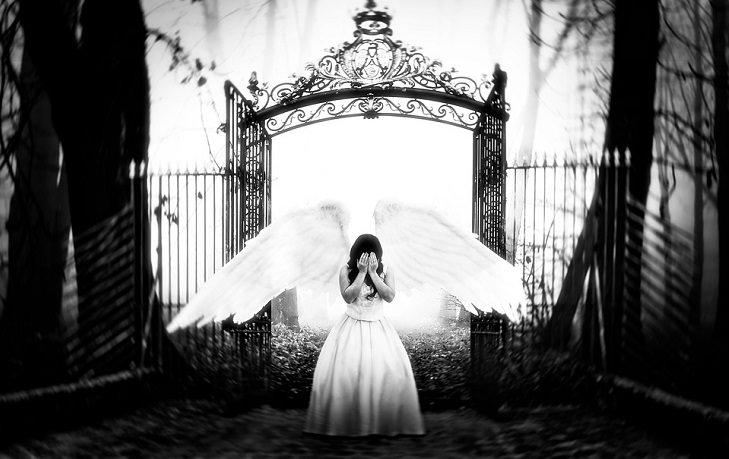 joke heaven gates