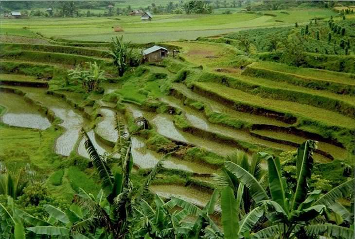 Indonesia, beautiful, interesting