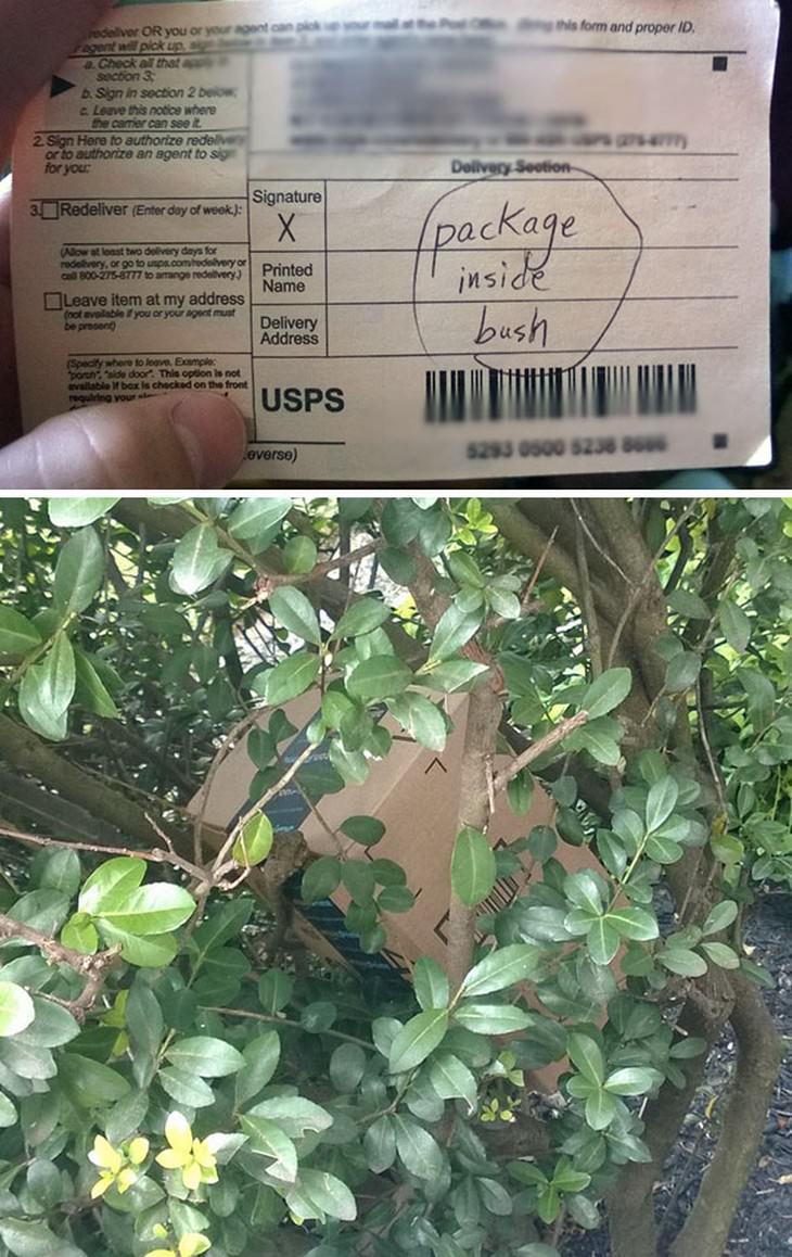 delivery fails, hilarious
