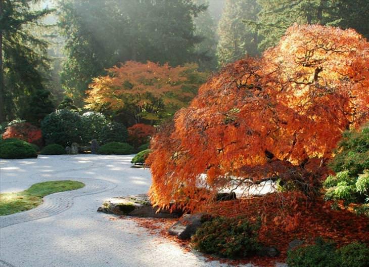 gardens, Japan