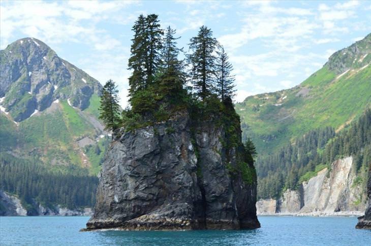 beautiful, nature,