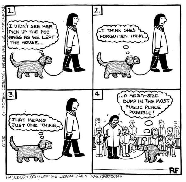 Hilarious Comics That Get Life With Dogs Funny BabaMail - 18 hilarious comics that are all too true for cat owners
