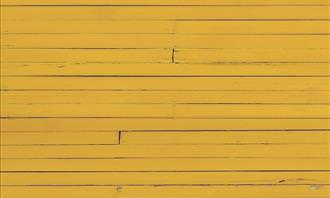 yellow fence