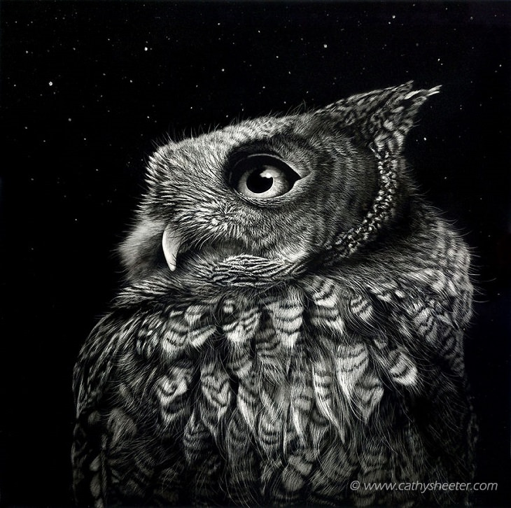 Hyper Realistic Scratch Drawings Art Babamail