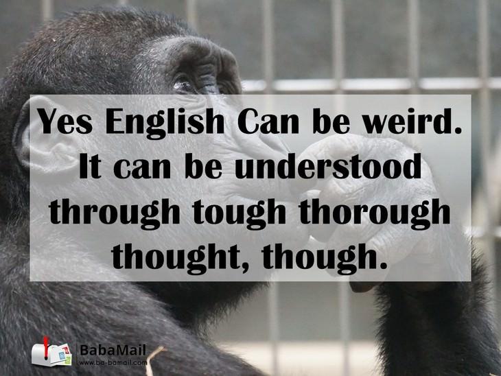 language, funny, English, grammar, spelling
