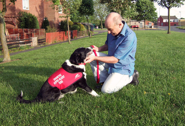 Do You Need a Diabetic Alert Dog 2 People on How Their Companions Have Changed Their Lives