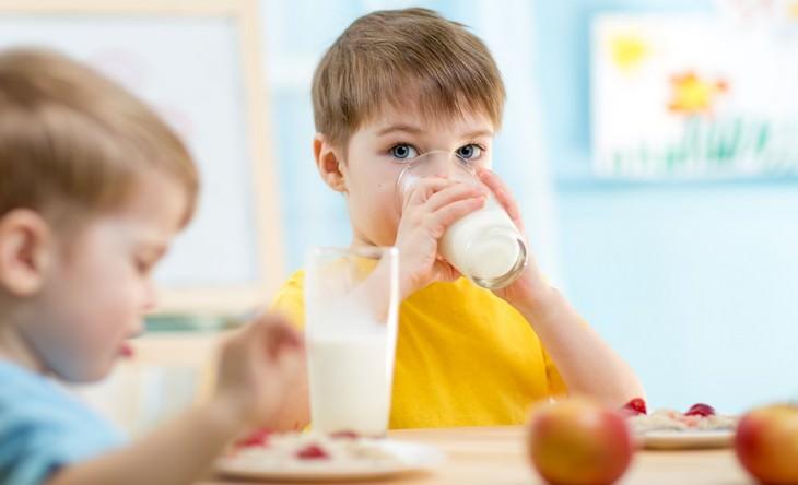 goat's milk, health benefits, guide